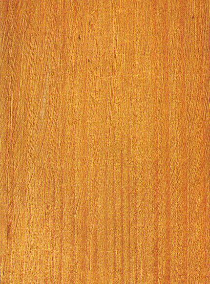 Resultado de imagen para madera abeto